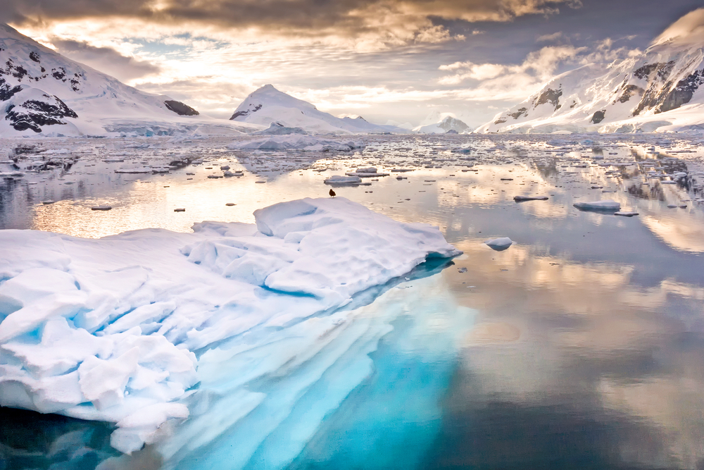 L'Arctique, le futur de l'exploration pétrolière ?