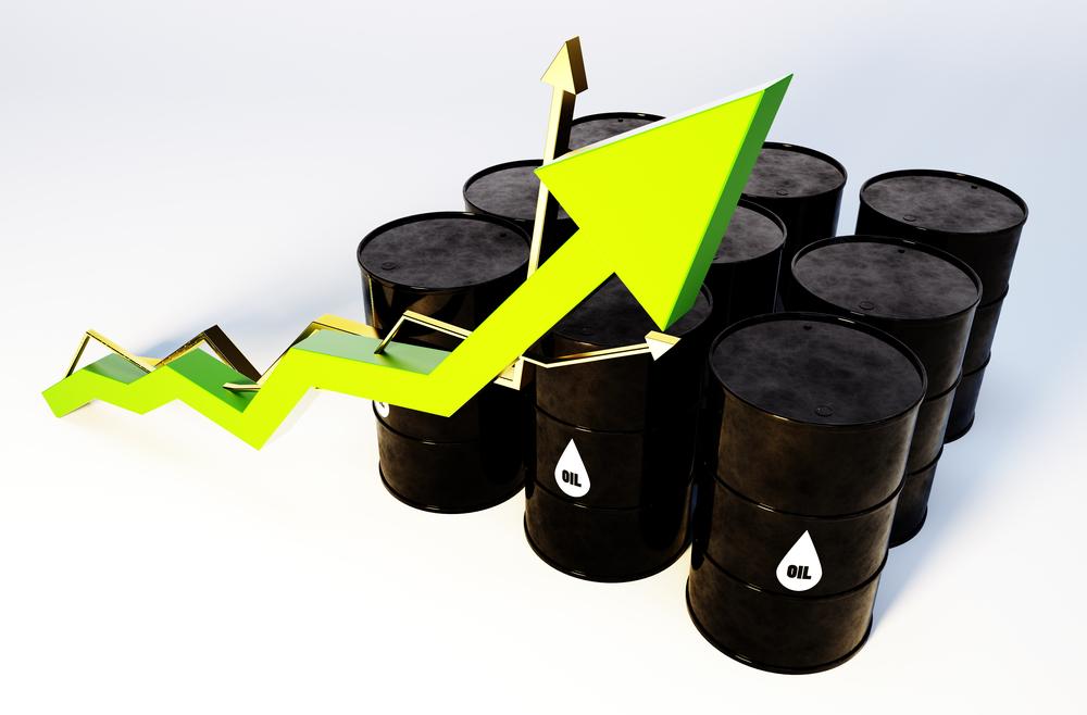 L'activité pétrolière en France en février 2020 : une hausse des livraisons de 0,5%