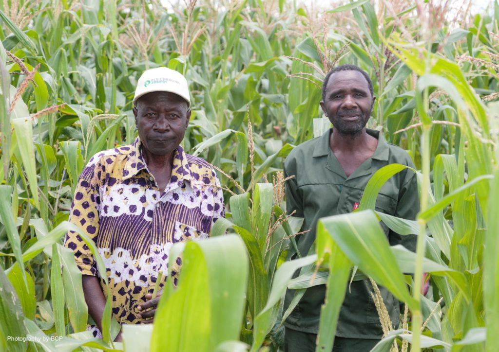 La gestion forestière en Zambie